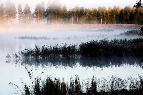 Morning mist over an Åland inland lake